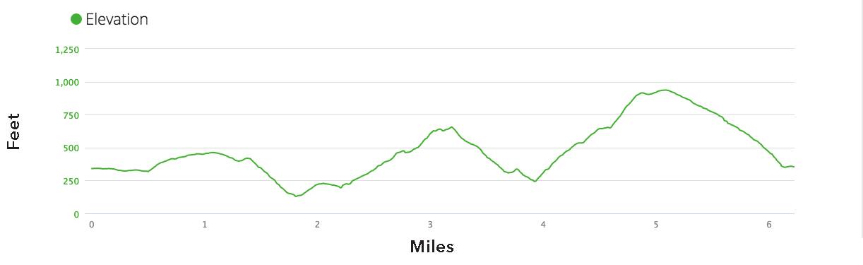 Elevation profile Garin 10K course